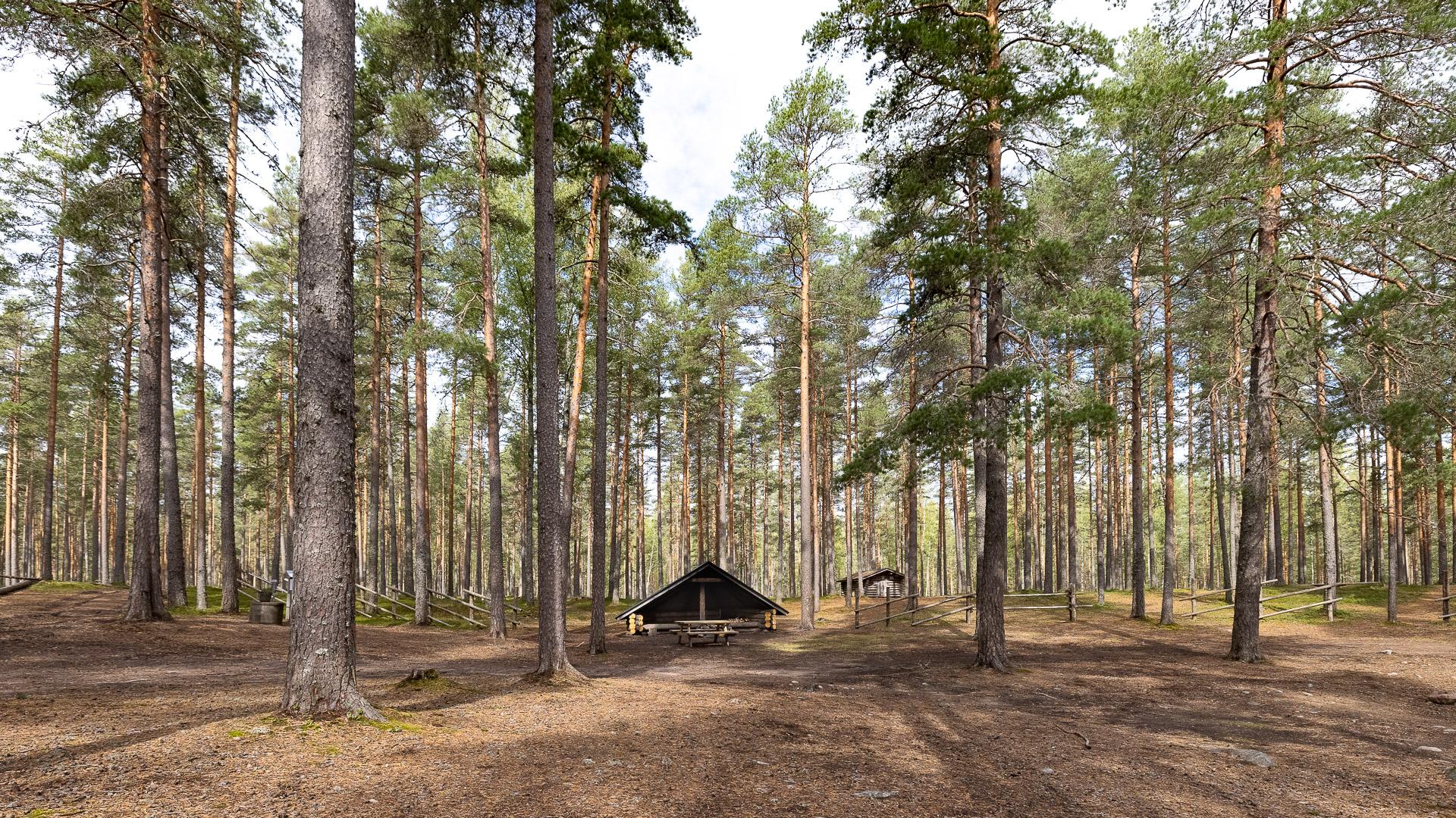 Ruskalaavu Hämeenkangas Jämijärvi
