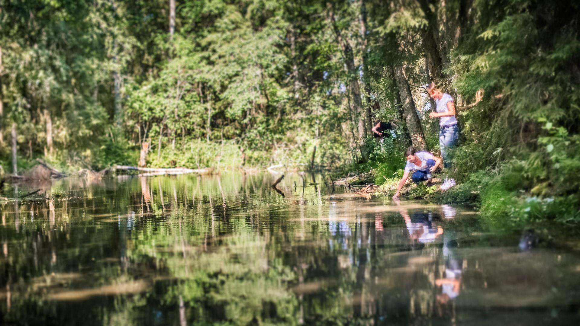 Visit Tampere Korsuretket Patikointi Hiking Forest Nature Laura Vanzo 14